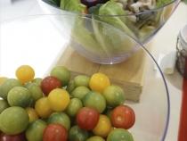koike-ws-vegetable-23.jpg