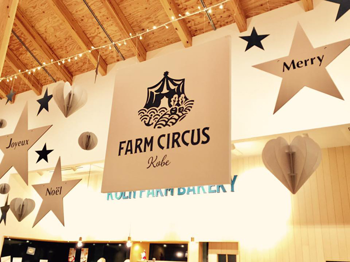 FARM CIRCUS CHRISTMAS DECORATION